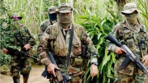 FAN de Maduro neutralizó a dos paramilitares de Los Rastrojos en Táchira