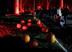 """EEUU exhortó a evitar un Halloween de """"alto riesgo"""" por la pandemia"""