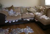 Sentado sobre una fortuna: Encontró 43 mil dólares en un sofá de segunda mano y los devolvió