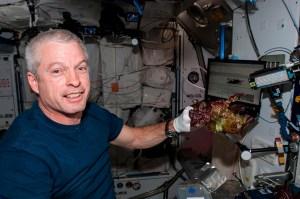La Nasa cultiva en el espacio lechugas seguras para consumo