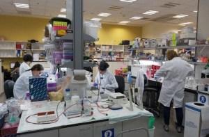 Una vacuna probada en ratones podría ayudar a la lucha contra el Covid-19, afirman expertos