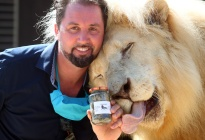 Circo alemán descubrió un tesoro en plena crisis de coronavirus... el excremento de grandes felinos