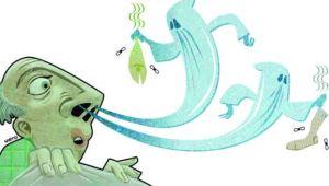"""Las """"alucinaciones olfativas"""" que podría causar el coronavirus"""