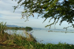 Comisión de Ambiente de la AN, realizó inspección en el lago de Valencia (Videos)