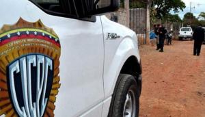 """Capturaron a dos """"joyitas"""" por múltiples robos de celulares en Guárico"""