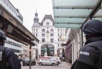 Un hombre confiesa en Austria un asesinato al azar para ir a la cárcel