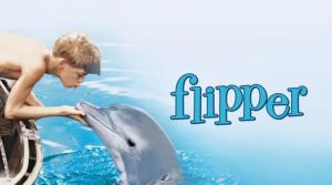 """¿Suicidio? El triste final del delfín de la recordada serie """"Flipper"""""""