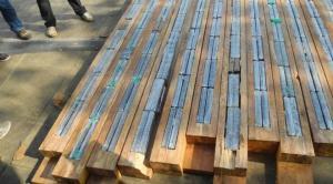 La estrecha relación entre la cocaína y la madera ilegal en la Amazonia